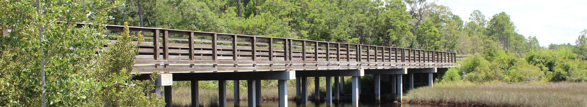 Panhandle_Engineering_Bridge_header